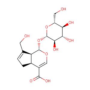 geniposidic acid,CAS No. 27741-01-1.