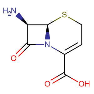 (6R,7R)-7-Amino-8-oxo-5-thia-1-azabicyclo[4.2.0]oct-2-ene-2-carboxylic acid,CAS No. 36923-17-8.