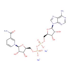 beta-Nicotinamide adenine dinucleotide disodium salt,CAS No. 606-68-8.