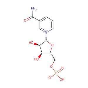 [(2R,3S,4R,5R)-5-(3-carbamoylpyridin-1-ium-1-yl)-3,4-dihydroxyoxolan-2-yl]methyl hydrogen phosphate,CAS No. 1094-61-7.