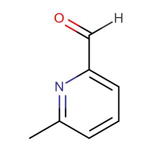 6-Methylpyridine-2-carboxaldehyde,CAS No. 1122-72-1.