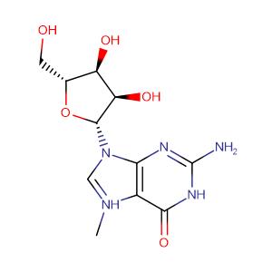 7-METHYLGUANOSINE,CAS No. 20244-86-4.